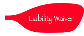 Waiver/Liability Icon
